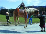 Equi-Lift-Hebegeschirr für Pferde